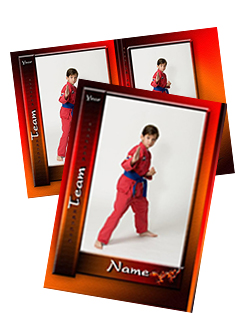 Martial arts Trading Cards